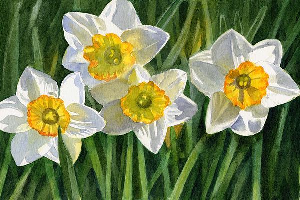 Four Small Daffodils Print by Sharon Freeman