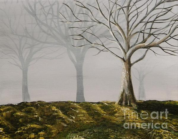 Four Trees Print by Steven Dopka