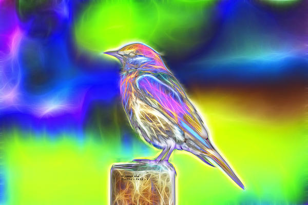 Fractal - Colorful - Western Bluebird Print by James Ahn