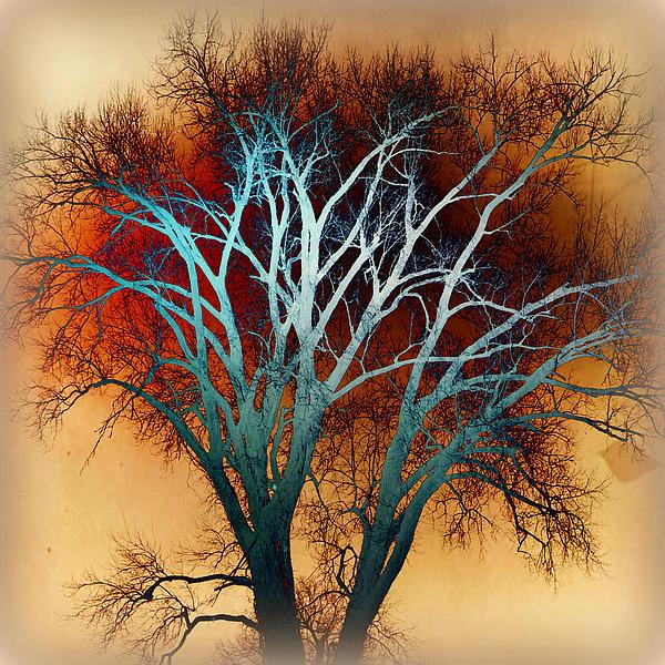 Freaky Tree 1 Print by Marty Koch