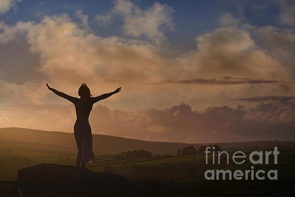 Andrew Bret Wallis - Freedom on Earth