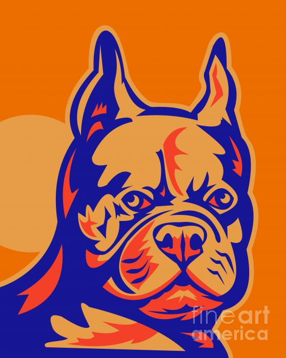 French Bulldog Head Portrait Retro Print by Aloysius Patrimonio