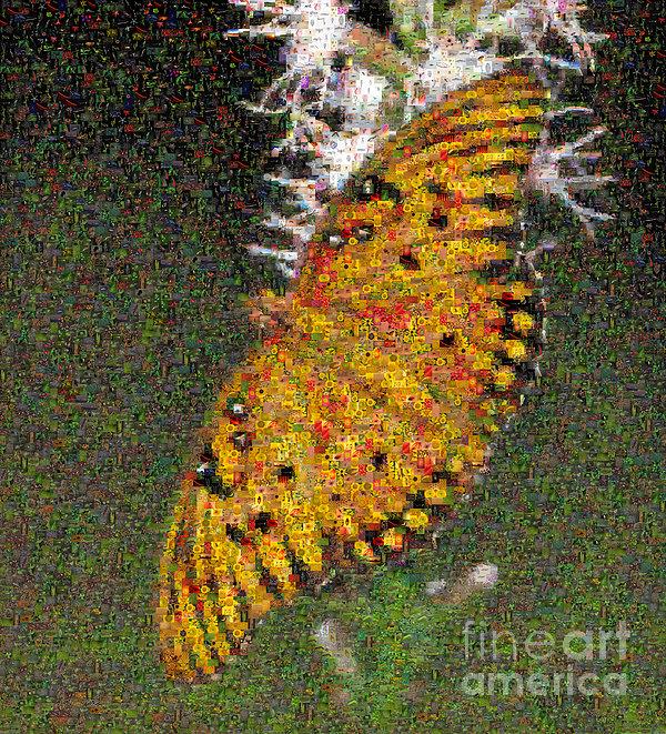 Fritillary Butterfly Mosaic Print by Scott Camazine