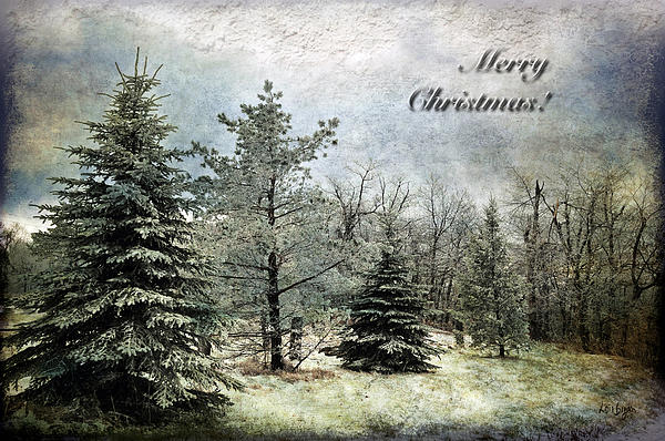 Frosty Christmas Card Print by Lois Bryan