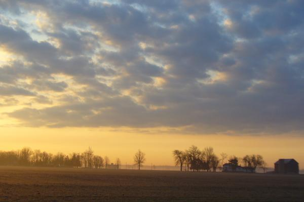 Frosty Spring Sunrise Print by Peggy King