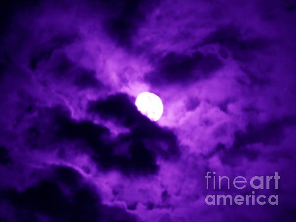 Renee Trenholm - Full Moon in Purple Haze