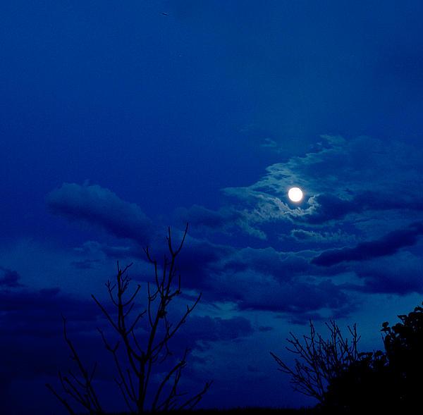 Irma BACKELANT GALLERIES - Full Moon