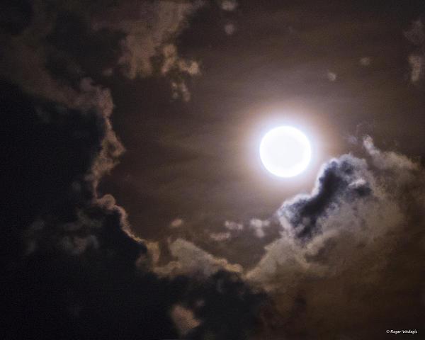 Roger Wedegis - Full Moon Of Summer