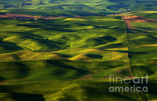Furrows And Folds Print by Mike  Dawson