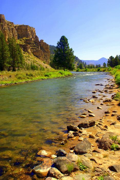 Gallitan River 1 Print by Marty Koch