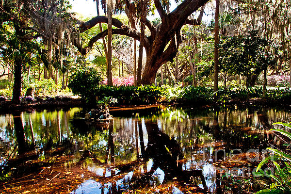Bob and Nancy Kendrick - Garden Reflections