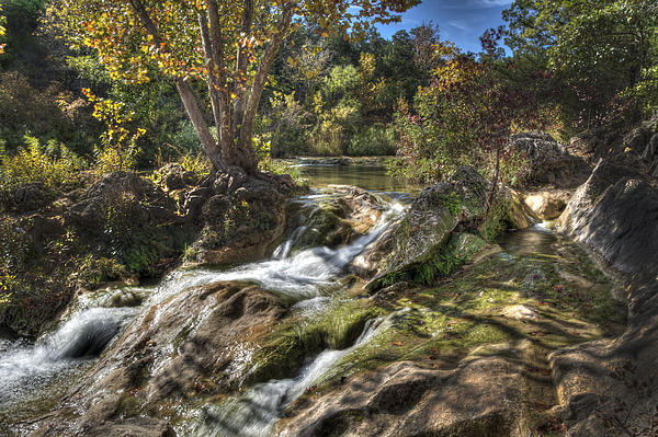 Gentle Mountain Stream Photograph  - Gentle Mountain Stream Fine Art Print