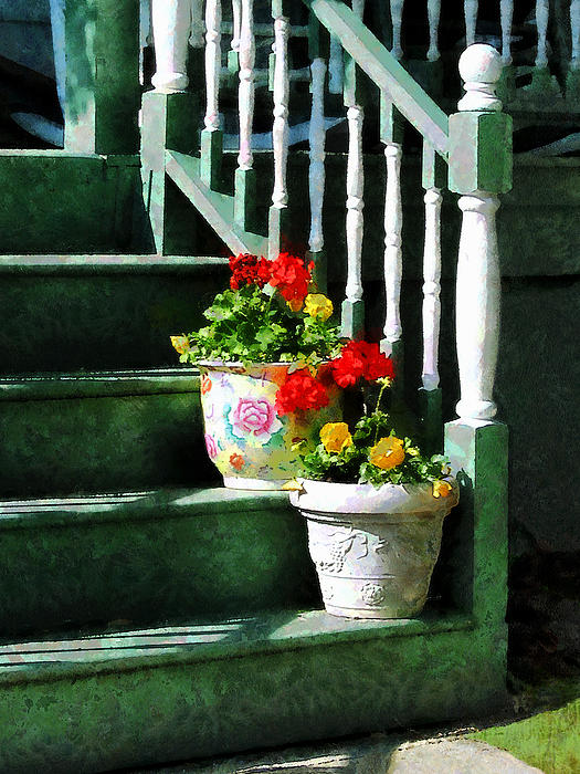 Geraniums And Pansies On Steps Print by Susan Savad