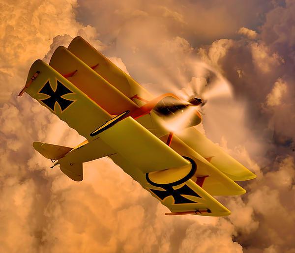 German Airplane Print by Gennadiy Golovskoy