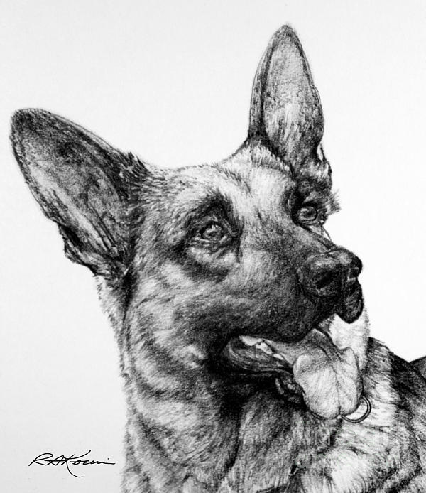 Roy Kaelin - German Shepherd
