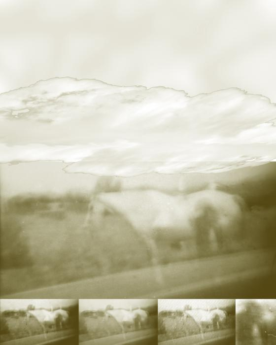 Ghost Horse Colorado Digital Art  - Ghost Horse Colorado Fine Art Print