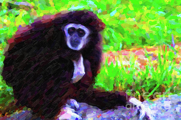 Gibbon Print by Wingsdomain Art and Photography