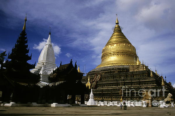 Gilded Stupa Of The Shwezigon Pagoda Print by Sami Sarkis