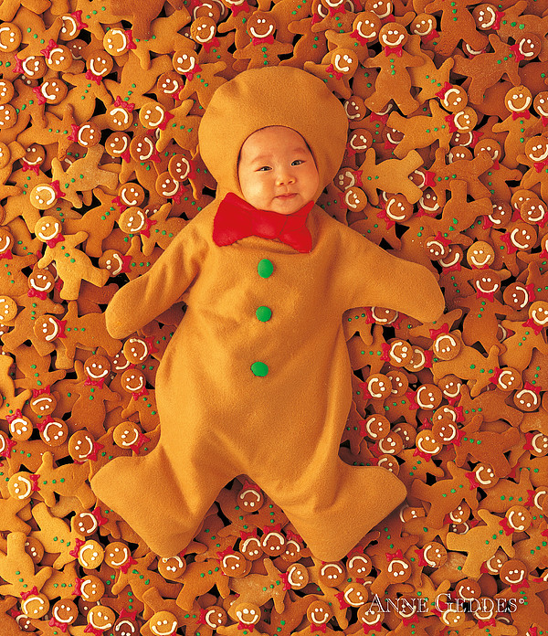 Gingerbreads Print by Anne Geddes