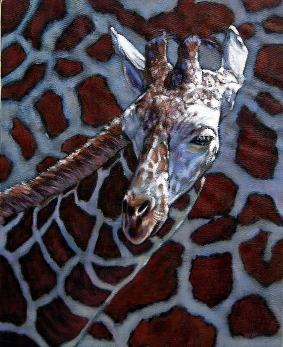 Giraffe Print by John Lautermilch
