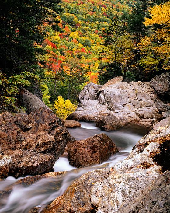 Neil Langdon - Glen Ellis Falls Autumn