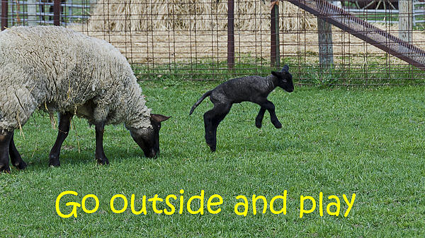Go Outside And Play Print by LeeAnn McLaneGoetz McLaneGoetzStudioLLCcom