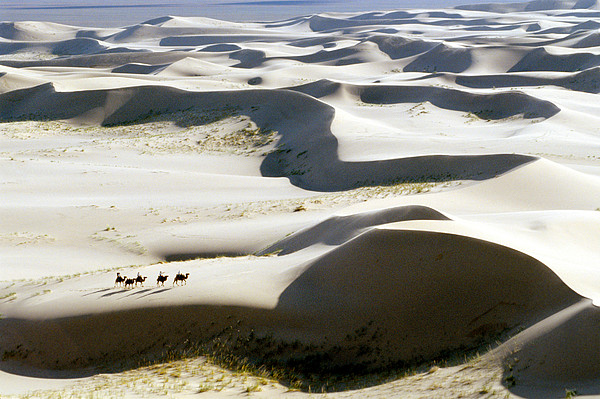 Gobi Desert Print by Ria Novosti