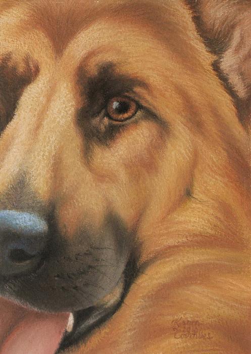 Goggie Shepherd Print by Karen Coombes