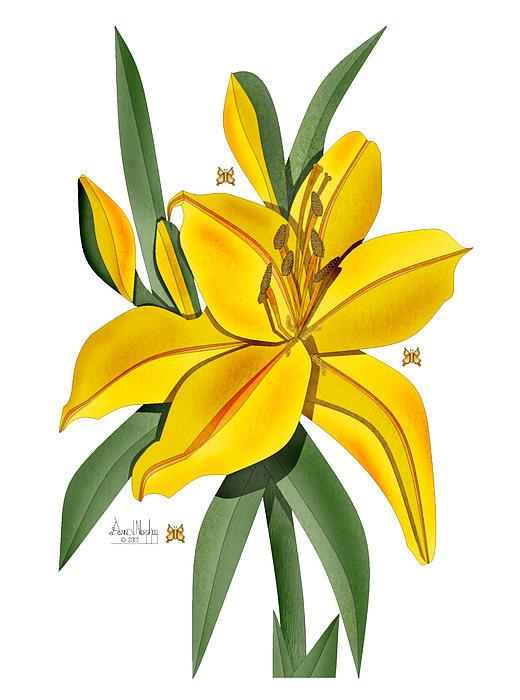 Anne Norskog - Golden Lily on White