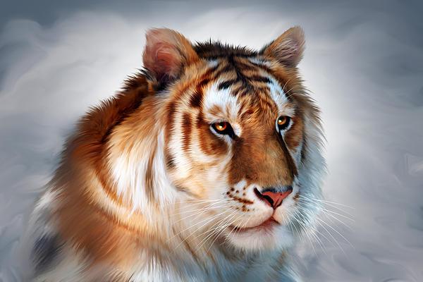 Golden Tiger Print by Julie L Hoddinott