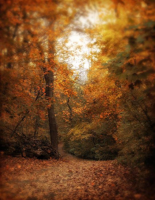 Jessica Jenney - Golden Trail