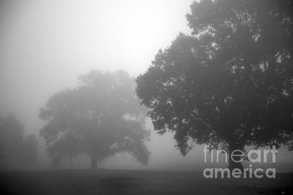 Golf Course With Fog Print by Amanda Barcon