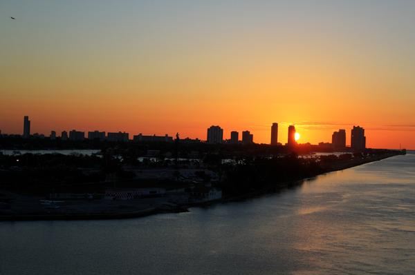 Good Morning Miami Print by Shelley Neff