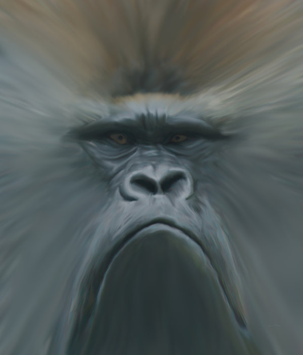 Ernie Echols - Gorilla Freehand abstract