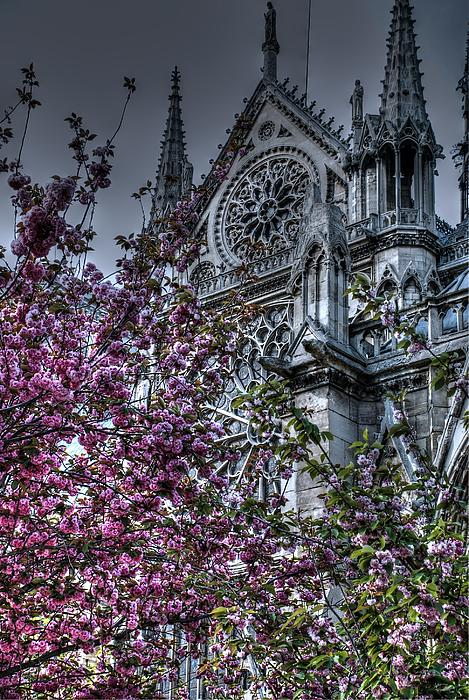 Gothic Paris Print by Jennifer Lyon