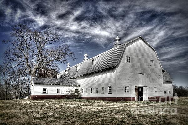 Benanne Stiens - Governor Scott Dairy Farm