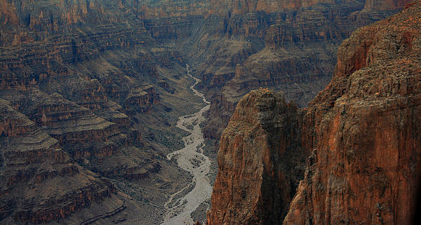 Grand Canyon-aerial Perspective Print by Douglas Barnard