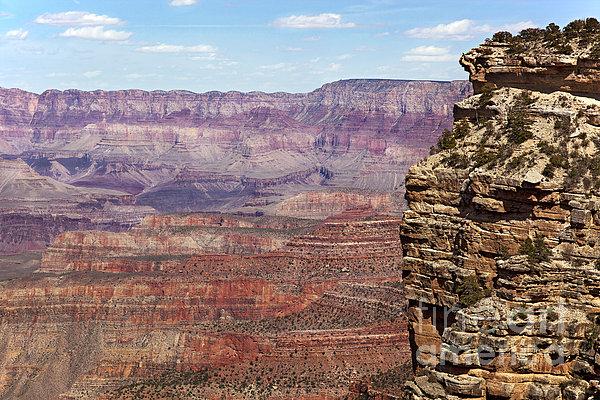 Grand Canyon Print by Jane Rix