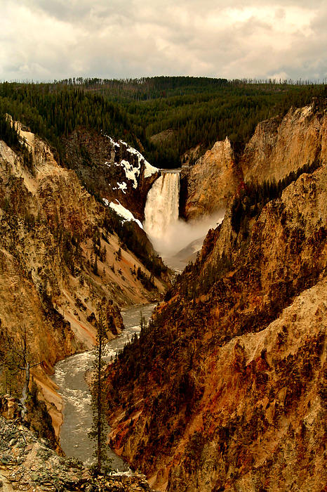 Grand Canyon Of The Yellowstone Print by Ellen Heaverlo