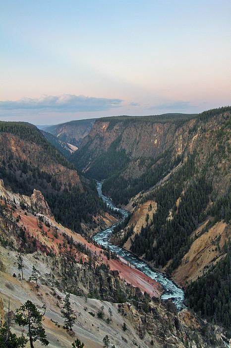 Grand Canyon Of Yellowstone Print by Cindy Chou Photography