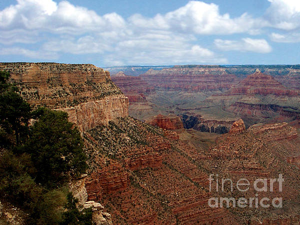 Grand Canyon Print by The Kepharts