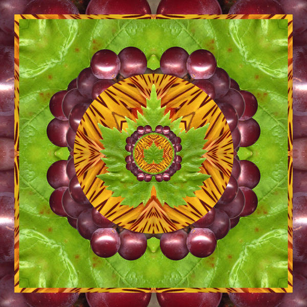 Grape Domain Print by Bell And Todd
