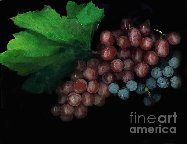 Grapes In Black Print by Casey DiDonato