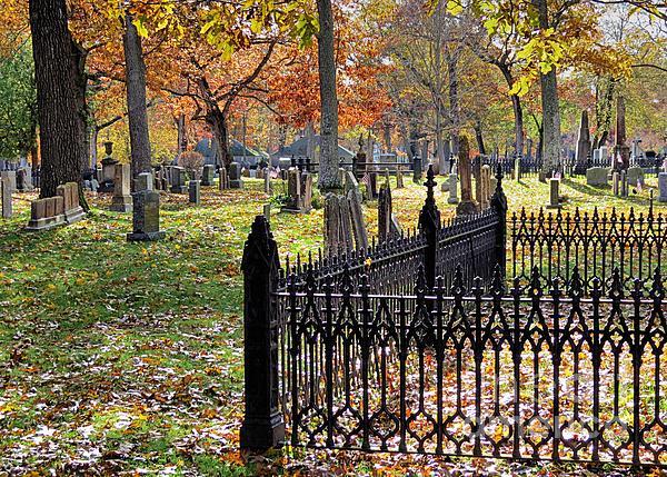 Gravestones Print by Janice Drew