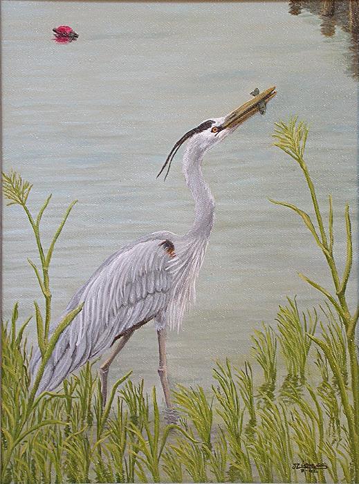 Great Blue Heron Print by Jim Ziemer