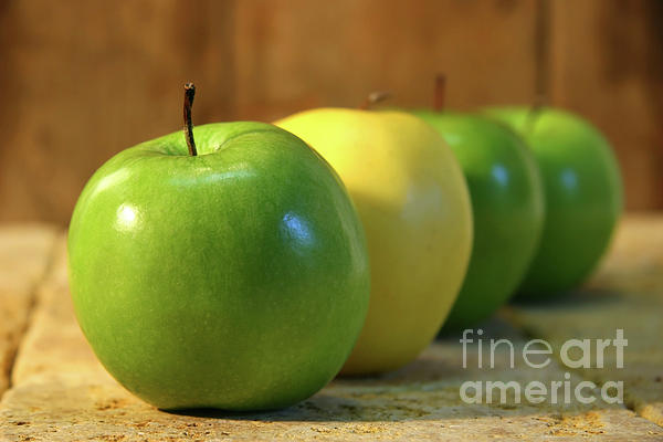 Green And Yellow Apples Print by Sandra Cunningham
