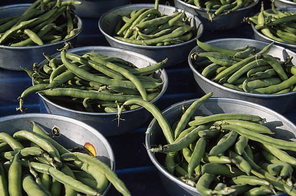 Green Beans In Tin Buckets For Sale Print by David Evans
