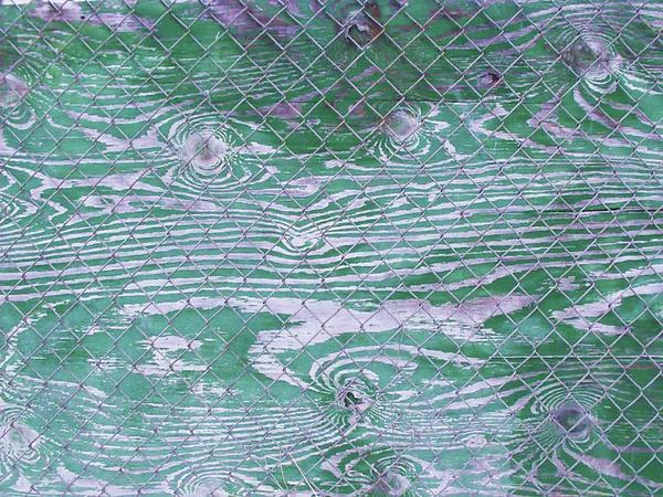 Green Fence Print by Anna Villarreal Garbis