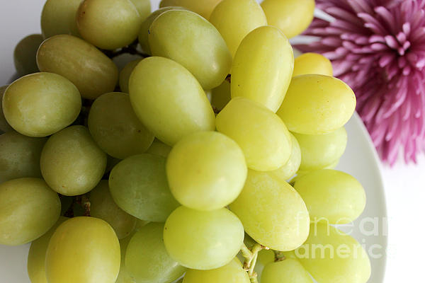 Green Grapes And Purple Mum Print by Barbara Griffin