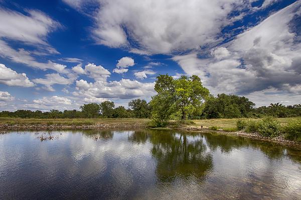 Green Scene At Lake 15 Print by Bill Tiepelman